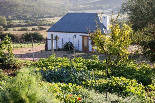 Swartberg Country Manor Oudtshoorn