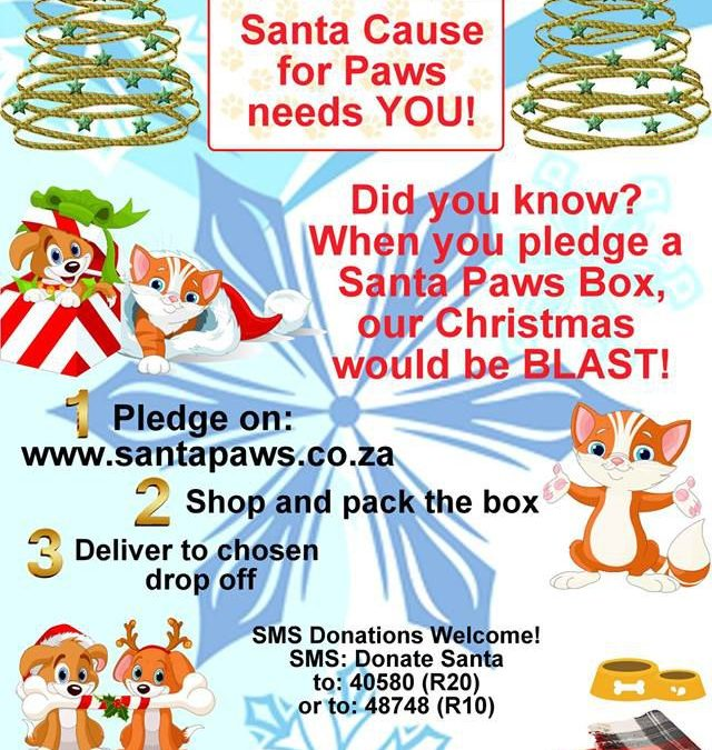 Animal in Need – Santa Cause