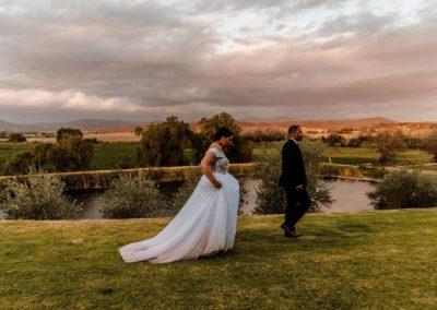 Surval Boutique Olive Estate - Wedding View