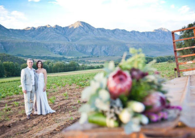 Swartberg Country Manor - Wedding View